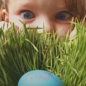Охота за крашенками как провести пасху с детьми 2015 куда пойти